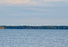 Windmills of Your Mind (Irene, Montreal, QC) Tags: windmillsofyourmind windmills whitewindmills song songs water waterscenes shoreline oppositeshores greenery trees treesilhouettes treebranches greenleaves outdoors outdoorscenes