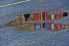 reflection after rhe rain (gianmaria.colognese) Tags: riflessi acqua asfalto reflection water colors rosso blu