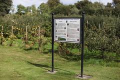 Rosemount Experimental Research Station (UCD Staff Photography Club) Tags: ucd dublin ireland rosemount apples orchard