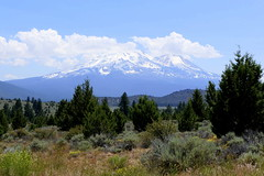 Mount Shasta (ivlys) Tags: usa california mountshasta 43218m berg mountain strase road landschaft landscape natur nature ivlys