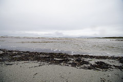 09 Sept 2019 Kilmory (7) (AJ Yakstrangler) Tags: yakstrangler kilmory knapdaleforest argyllandbute beach scotland