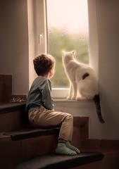 Findus my Cat (agirygula) Tags: cat boy together friends nature window rain rainy day light natural friendship