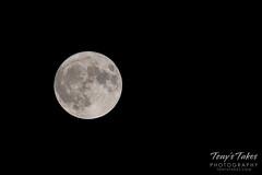 September 13, 2019 - The full harvest moon. (Tony's Takes)