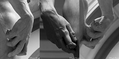 David's Hand (Michelangelo) (Joy Forever) Tags: florence italy europe sculpture statue renaissance michelangelo david accademia blackwhite blackandwhite bw