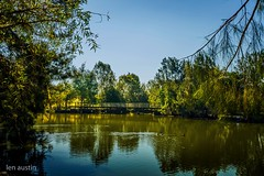 LATE AFTERNOON (len.austin) Tags: afternoon australia australianplants birds brisbane footbridge gums lake landscape outdoor park reflections subtropics windermerepark