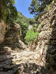 Crete 5-2017-206 (pete.w.morton) Tags: chania creteregion greece
