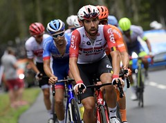 10809880-091 (Lotto Soudal Cycling Team) Tags: cycling cyclisme etape france frankrijk letour letourdefrance protour race rit road ronde rondevanfrankrijk route sport stage tdf tdf2019 tour uci wegrit wielerwedstrijd wielrennen worldtour nicovereecken 2019 laplanchedesbellesfilles