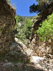 Crete 5-2017-204 (pete.w.morton) Tags: chania creteregion greece