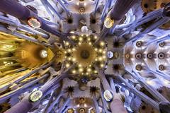 Barcelona; Sagrada Familia (drasphotography) Tags: barcelona spain catalunya drasphotography travelphotography travel architecture architektur sagrada famila looking up church cathedral basilika reisefotografie kirche