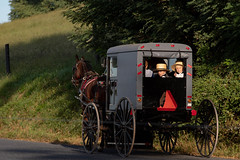 Sunday Best (J-Bones) Tags: 201909158756 amish child children sunday church buggy horse country rural