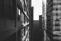 construct. (jonathancastellino) Tags: toronto series architecture construction leica q net building light reflection window ngc