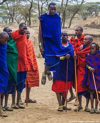 2019.06.08.3931 Maasai Jumper (Brunswick Forge) Tags: 2019 grouped tanzania africa outdoor outdoors nature nikond750 nikkor200500mm summer winter maasai peopleportraits ngorongoro ngorongoroconservationarea nikond500 inmotion fx tamron1530mm day sunny clear sky air