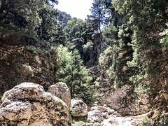 Crete 5-2017-203 (pete.w.morton) Tags: chania creteregion greece