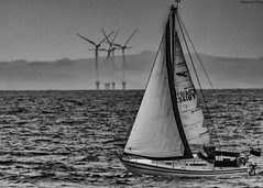 """""""Sea Otter"""" catches the Wind. (Pensioner Percy, very slow at the moment) Tags: yacht seaotter sails sea windturbine greenenergy maryport bw monochome d7200 tamron70300mm earth planetearth turbine solway water cumbria boat sailing seascape rigging nikon tamronsp70300mmf456divc climatechange blackandwhite"""