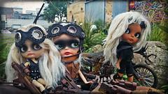 The Warriors (Motor City Dolly) Tags: custom blonde alpaca blythe dolls ooak tan skin mad max wasteland warriors