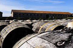 Maison Noilly Prat (lesphotosdepatrick) Tags: maisonnoillyprat marseillan vin wine vermouth fujifilm fujifilmx100f fujilove fujix velvia drymartini shakennotstirred