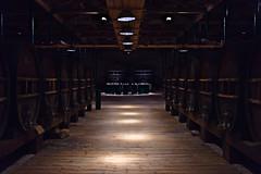 Maison Noilly Prat (lesphotosdepatrick) Tags: maisonnoillyprat marseillan clairobscur penombre vin wine vermouth fujifilm fujifilmx100f fujilove fujix velvia drymartini shakennotstirred tasting winetasting theplacetotaste