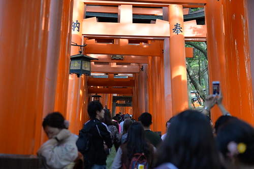 The path through the orange torii gates was horribly overcrowded