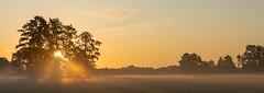 Zonsopkomst (Bert (A.H.) Roos) Tags: fog landscape landschap mist morgen morning nature natuur ochtend sunrise weather weer zonsopgang lunteren gelderland netherlands