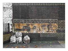The Built Environment, East London, England. (Joseph O'Malley64) Tags: thebuiltenvironment newtopography newtopographics manmadeenvironment manmadestructures structures urban urbanlandscape eastlondon eastend london england uk britain british greatbritain wall walls brickwalls brickwork bricksmortar cement pointing render repointing repairs patina waterdamage frostdamage airpollutiondamage acidraindamage algae graffiti scratchedgraffiti paint railwayproperty railside trackside gardenwall railings gardenfence refuse refusesacks binbags rubbish pavement tarmac fallenleaves incline gradient documentaryphotography britishdocumentaryphotography fujix fujix100t accuracyprecision