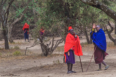 2019.06.08.4002 Maasai Goodbye (Explored) (Brunswick Forge) Tags: 2019 grouped tanzania africa outdoor outdoors nature nikond750 nikkor200500mm summer winter maasai peopleportraits ngorongoro ngorongoroconservationarea nikond500 inmotion fx tamron1530mm day sunny clear sky air favorited commented explored