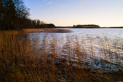 Water's edge (Rico the noob) Tags: 2018 rock d850 landscape sunset nature water outdoor lake stones rocks trees mf tree travel forest published sky dof 28mm finland manualfocus 28mmf28ais