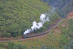 No. 1213 Prince of Wales (gareth46233) Tags: 1213 9 prince wales vale rheidol railway aberystwyth devils bridge heart attack hill