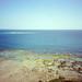 Reef Coast