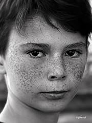 ginger kid 2 (quentinmirabelle) Tags: garçon enfant enfance kid roux rouquin rousseur tachesderousseur regard noiretblanc blackwhite nb bw monochrome instantané yeux nikon d5500