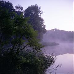 (no49_pierre) Tags: morninglight fallisapporaching tlr medium format mamiyac220 landscape