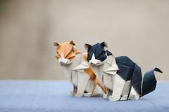 Cats (Daniel_Jllo) Tags: origami origamiart art paper papiroflexia paperfold animals cats pets cat origamicats