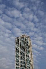 Bon Dimarts de núvols, de cabretes i la Torre. (heraldeixample) Tags: altocúmulus altocumulus heraldeixample núvols clouds nubes skyer nuages cymylau nuvole 雲 nuvens nori 云 облака wolken nwn martesdenubes cabretes barceloneta barcelona mapfre ngc albertdelahoz