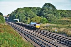66144 (stavioni) Tags: ews db cargo schenker 66144 class66 shed diesel rail railway train locomotive railfreight freight