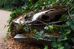 Buried (frankdorgathen) Tags: banal mundane sonyrx100m3 sonyrx100iii rheinland kaiserswerth düsseldorf blätter leaves rust rost verfall decay auto car cadillac