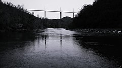 Oser la traversée à la nage! (Un jour en France) Tags: canoneos6dmarkii canonef1635mmf28liiusm noiretblanc noiretblancfrance rivière pont viaducdemillau tarn occitanie millau