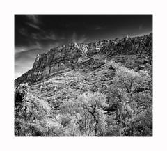 Sabino Canyon (Joe Franklin Photography) Tags: sabinocanyon tucson arizona az hasselblad 500cm almostanything canyon sabino southwest joefranklin wwwjoefranklinphotographycom