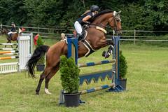 A7306884_s (AndiP66) Tags: kva pferdesporttage mettmenstetten kavallerieverein bezirk affoltern reitanlage grüthau 14september2019 september 2019 springen pferd horse schweiz switzerland kantonzürich cantonzurich concours wettbewerb horsejumping equestrian sports springreiten pferdespringen pferdesport sport sony sonyalpha 7markiii 7iii 7m3 a7iii alpha ilce7m3 sonyfe70300mmf4556goss fe70300mm 70300mm f4556 emount andreaspeters
