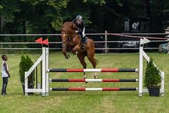 A7306687_s (AndiP66) Tags: kva pferdesporttage mettmenstetten kavallerieverein bezirk affoltern reitanlage grüthau 14september2019 september 2019 springen pferd horse schweiz switzerland kantonzürich cantonzurich concours wettbewerb horsejumping equestrian sports springreiten pferdespringen pferdesport sport sony sonyalpha 7markiii 7iii 7m3 a7iii alpha ilce7m3 sonyfe70300mmf4556goss fe70300mm 70300mm f4556 emount andreaspeters