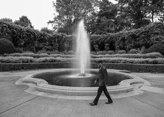 Conservancy Fountain _ bw (Joe Josephs: 3,166,284 views - thank you) Tags: centralpark centralparkconservancygarden landscapephotography manhattan nyc newyorkcity travel travelphotography centralparkconservancy citypark colorphotography foliage nature outdoorphotography plants urbanpark fountain walking bw monochrome blackandwhite
