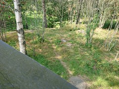 Looking at the trail from the tower. (mtbboy1993) Tags: askim askimmuseum norge norway watchtower singletrack trail forest skog indreøstfold østfold sonycameraapp sunny rockroller barerock grass vakttårnet
