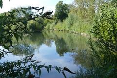 Clissold Park (Loz Flowers) Tags: london stokenewington hackney clissoldpark londonparks