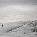 Van Roche Faurio naar Refuge des Écrins via Glacier Blanc
