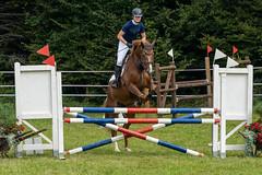 A7306723_s (AndiP66) Tags: kva pferdesporttage mettmenstetten kavallerieverein bezirk affoltern reitanlage grüthau 14september2019 september 2019 springen pferd horse schweiz switzerland kantonzürich cantonzurich concours wettbewerb horsejumping equestrian sports springreiten pferdespringen pferdesport sport sony sonyalpha 7markiii 7iii 7m3 a7iii alpha ilce7m3 sonyfe70300mmf4556goss fe70300mm 70300mm f4556 emount andreaspeters