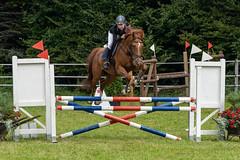 A7306685_s (AndiP66) Tags: kva pferdesporttage mettmenstetten kavallerieverein bezirk affoltern reitanlage grüthau 14september2019 september 2019 springen pferd horse schweiz switzerland kantonzürich cantonzurich concours wettbewerb horsejumping equestrian sports springreiten pferdespringen pferdesport sport sony sonyalpha 7markiii 7iii 7m3 a7iii alpha ilce7m3 sonyfe70300mmf4556goss fe70300mm 70300mm f4556 emount andreaspeters