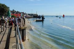 Old Leigh waterfront (ho_hokus) Tags: 2019 england essex essexcoast fujix20 fujifilmx20 leighregatta leighonsea oldleigh riverthames thamesestuary uk