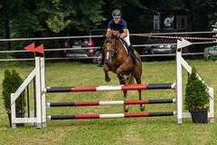 A7306726_s (AndiP66) Tags: kva pferdesporttage mettmenstetten kavallerieverein bezirk affoltern reitanlage grüthau 14september2019 september 2019 springen pferd horse schweiz switzerland kantonzürich cantonzurich concours wettbewerb horsejumping equestrian sports springreiten pferdespringen pferdesport sport sony sonyalpha 7markiii 7iii 7m3 a7iii alpha ilce7m3 sonyfe70300mmf4556goss fe70300mm 70300mm f4556 emount andreaspeters