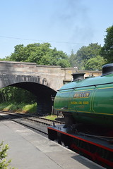 Whiston at Kingsley and Froghall Station (CoasterMadMatt) Tags: churnetvalleyrailway2019 churnetvalleyrailway churnet valley railway cvr 2019season steamrailway heritagerailway preservedrailway steam heritage preserved steamrailwaysinstaffordshire staffordshiresteamrailways staffordshireattractions attractionsinstaffordshire froghall2019 froghall kingsleyfroghallstation kingsleyandfroghallstation trainstation railwaystation train station whiston nationalcoalboard ncb steamtrain steamlocomotive steamengine locomotive engine vehicle staffordshiremoorlands staffordshire staffs moorlands moors westmidlands themidlands midlands england britain greatbritain gb unitedkingdom uk europe june2019 summer2019 june summer 2019 coastermadmattphotography coastermadmatt photos photographs photography