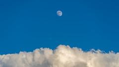 Arizona Skies (virtualwayfarer) Tags: arizona az northernarizona desert southwest america american usa moon clouds moonandclouds daytime daymoon arizonaskies bigskies roadtrip sonyalpha a7riii alexberger virtualwayfarer