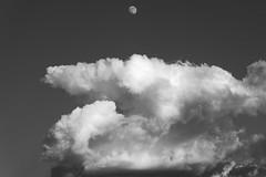 Arizona Skies (virtualwayfarer) Tags: arizona az northernarizona desert southwest america american usa moon clouds moonandclouds daytime daymoon arizonaskies bigskies roadtrip sonyalpha a7riii blackandwhite blackandwhitephotography alexberger virtualwayfarer