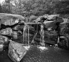 Waterfall – bw (Joe Josephs: 3,166,284 views - thank you) Tags: centralpark centralparkconservancygarden landscapephotography manhattan nyc newyorkcity travel travelphotography centralparkconservancy citypark colorphotography foliage nature outdoorphotography plants urbanpark water waterfall forest tres scenic tranquil bw monochrome blackandwhite landscape